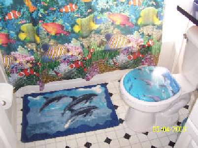 Nemo Bathroom Before